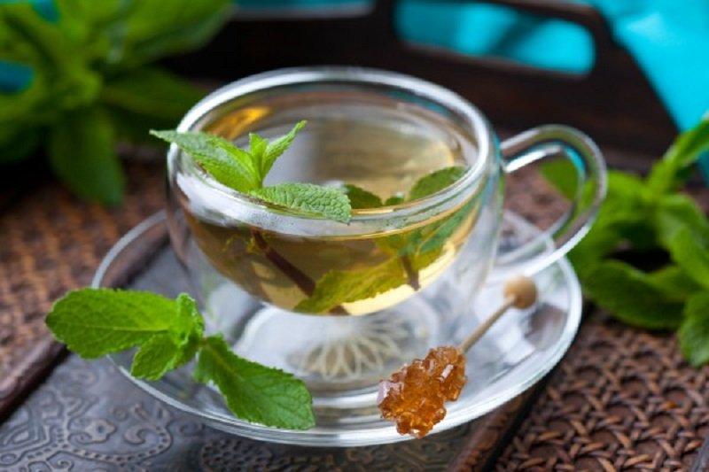 чай с расторопшей для похудения отзывы
