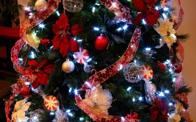 Это нужно учесть, чтобы нарядить елку к 2017 году правильно! Пусть новогоднее дерево принесет удачу!