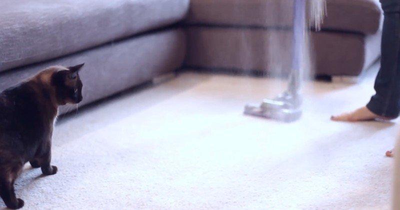 посыпать ковры