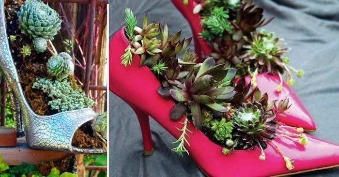 как оформить клумбу с лилиями