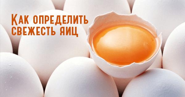 Как определить свежесть яиц, если на них не стоит штамп. Простой, но очень точный способ!