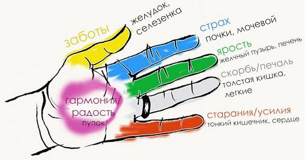 Секрет гармонии тела и души! Оказывается, человеческие органы неразрывно связаны с пальцами.