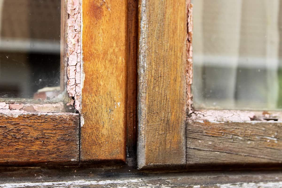 Зачем регулярно натирать окна чесноком чеснок, трещину, остановить, чеснока, Чеснок, трещины, DepositphotosКак, стекле, чтобы, растение, удивительное, нашей, также, влаге, попадать, внутрь, DepositphotosЗять, нужен, «расползание», однажды