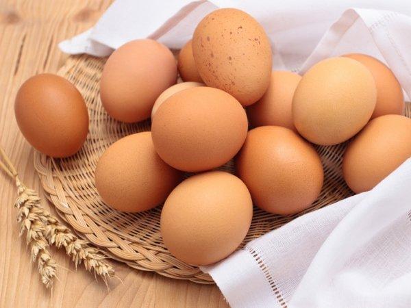 вареные яйца фото