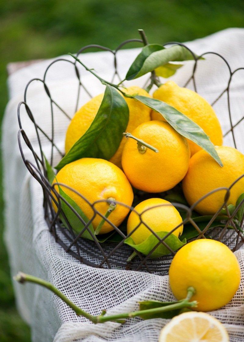 Методы очистки кухонной вытяжки Советы,Быт,Кухня,Лимоны,Сода,Чистка