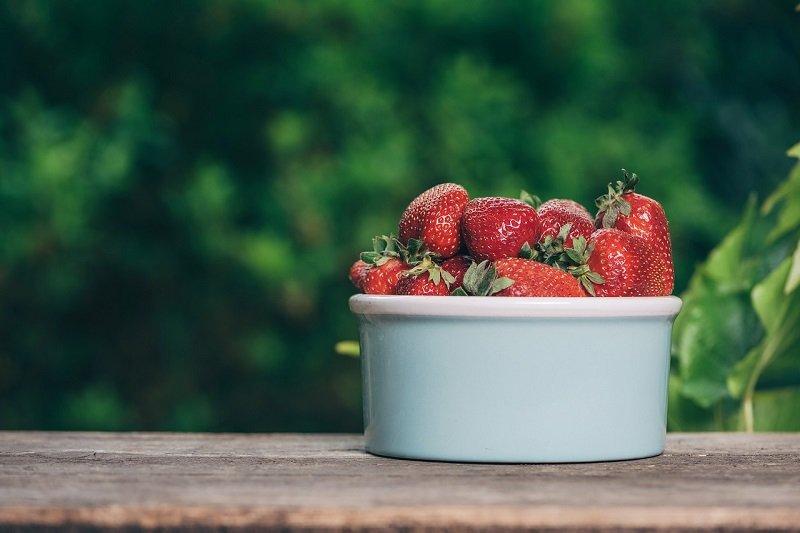 Как посадить клубнику в августе, чтобы она хорошо прижилась клубнику, посадить, можно, сантиметров, чтобы, будет, делать, PixabayКак, между, августе, подготовить, рассаду, когда, метод, расстоянии, саженец, должны, лунки, нужно, клубники