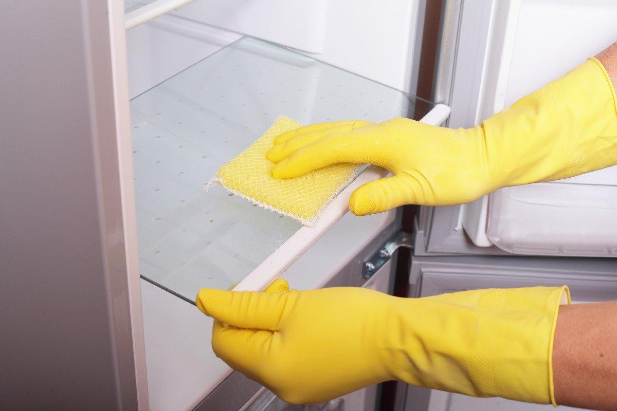 Как правильно разморозить холодильник по всем правилам