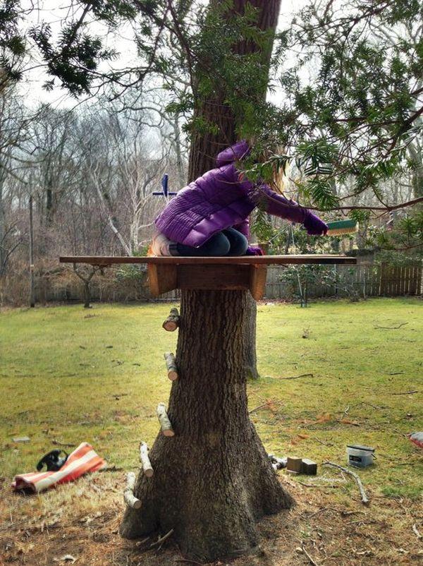 база на дереве