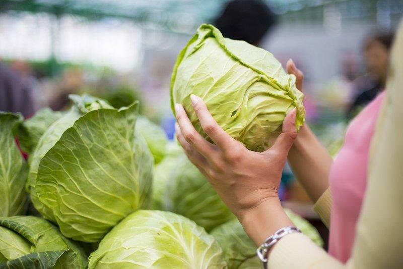 легкий способ квасить капусту