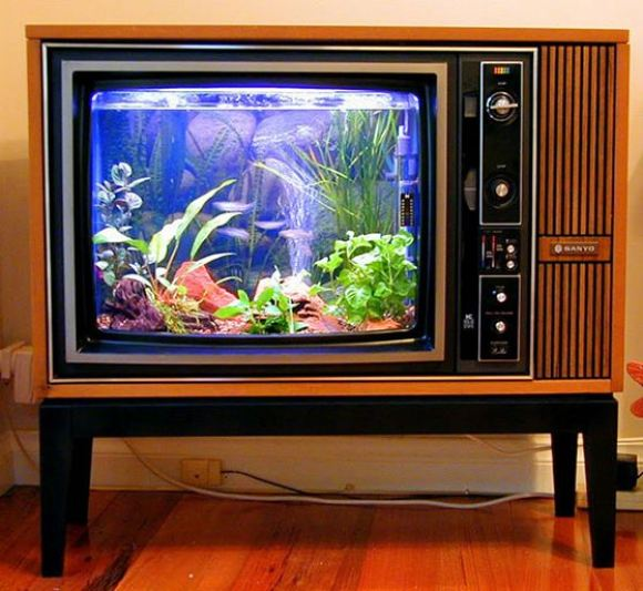 телевизор-тумба