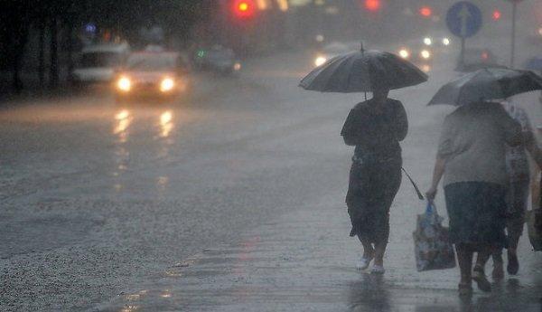 люди под зонтами под дождем