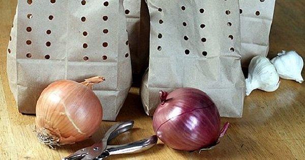 Этот способ поможет сохранить лук и чеснок на несколько месяцев! Именно так и нужно их хранить…