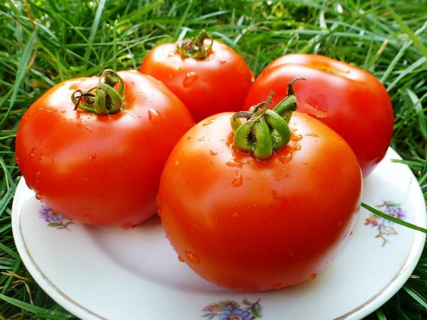 пресни домати през зимата