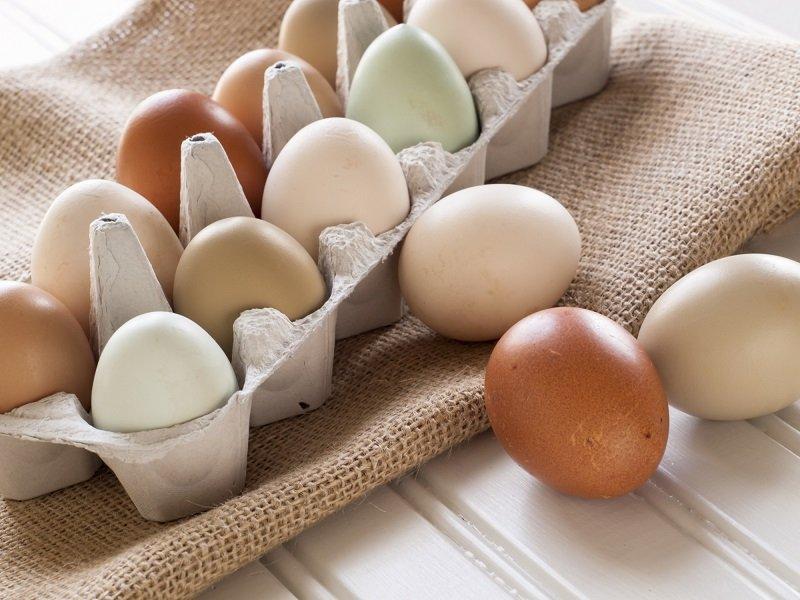 польза яиц по утрам