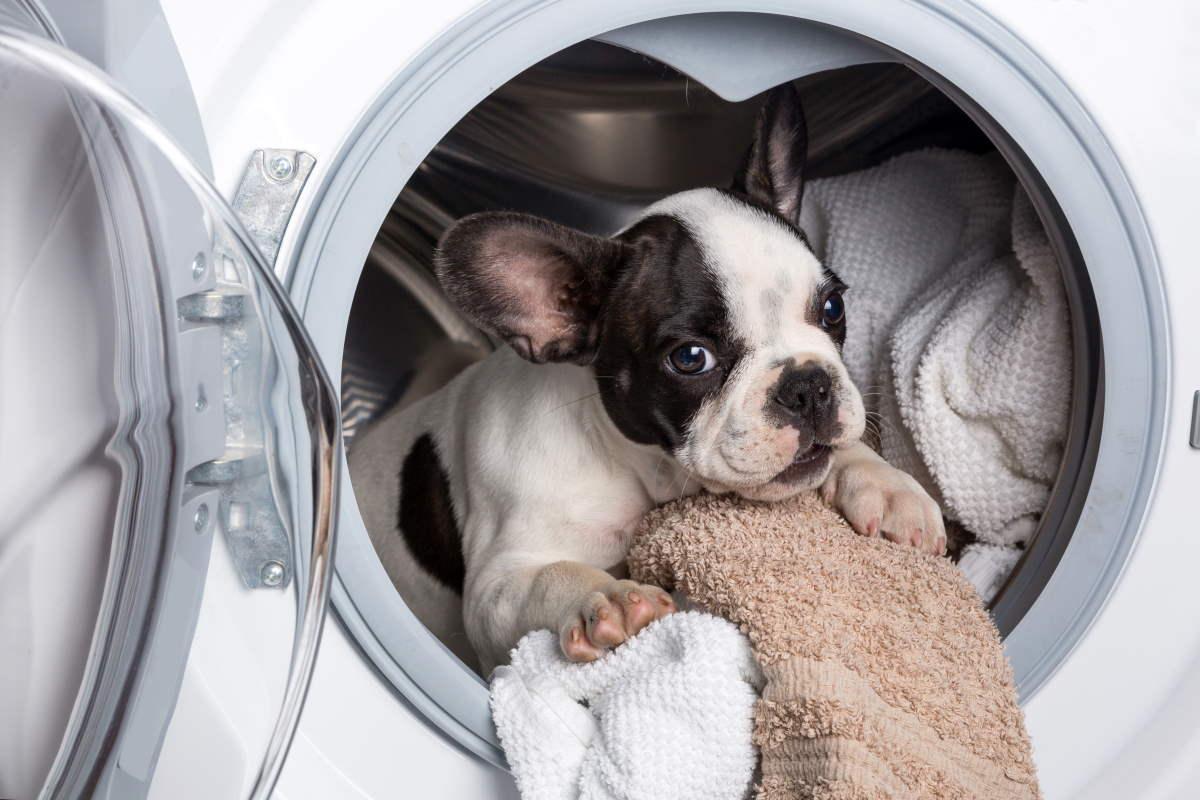 стиральная машинка воняет
