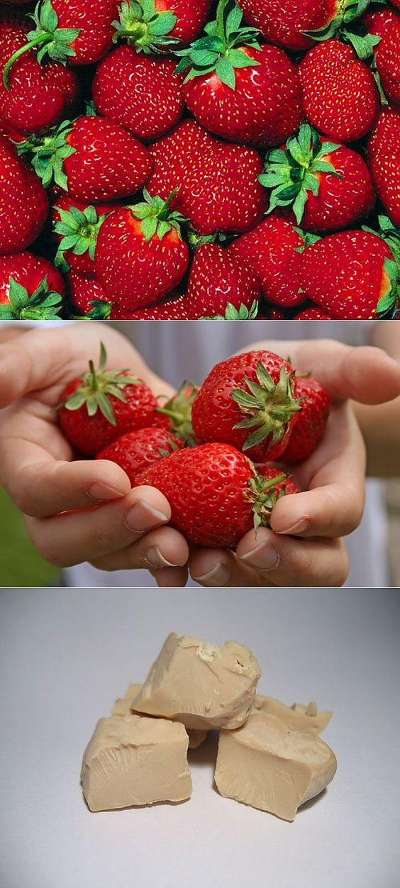 советы начинающему садоводу