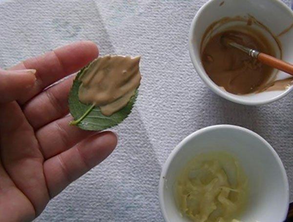 ako zdobiť tortu s bobuľami