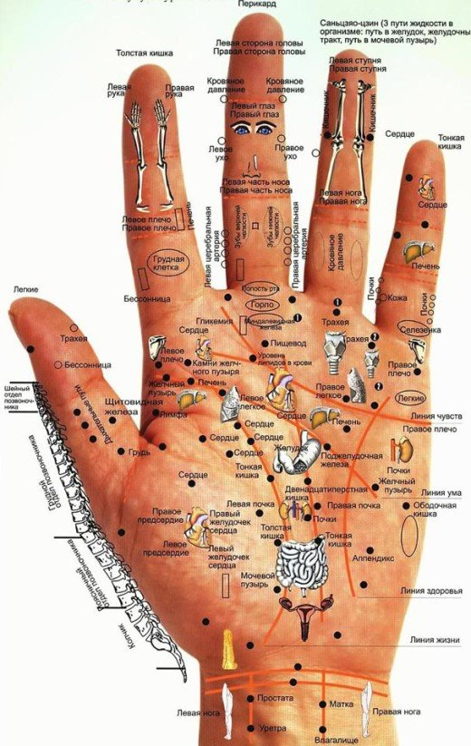 состояние здоровья по руке