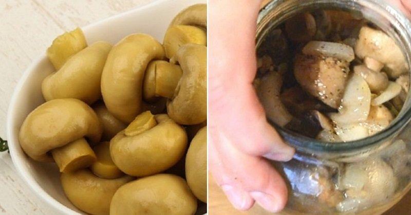 Как вкусно замариновать грибы в домашних условиях