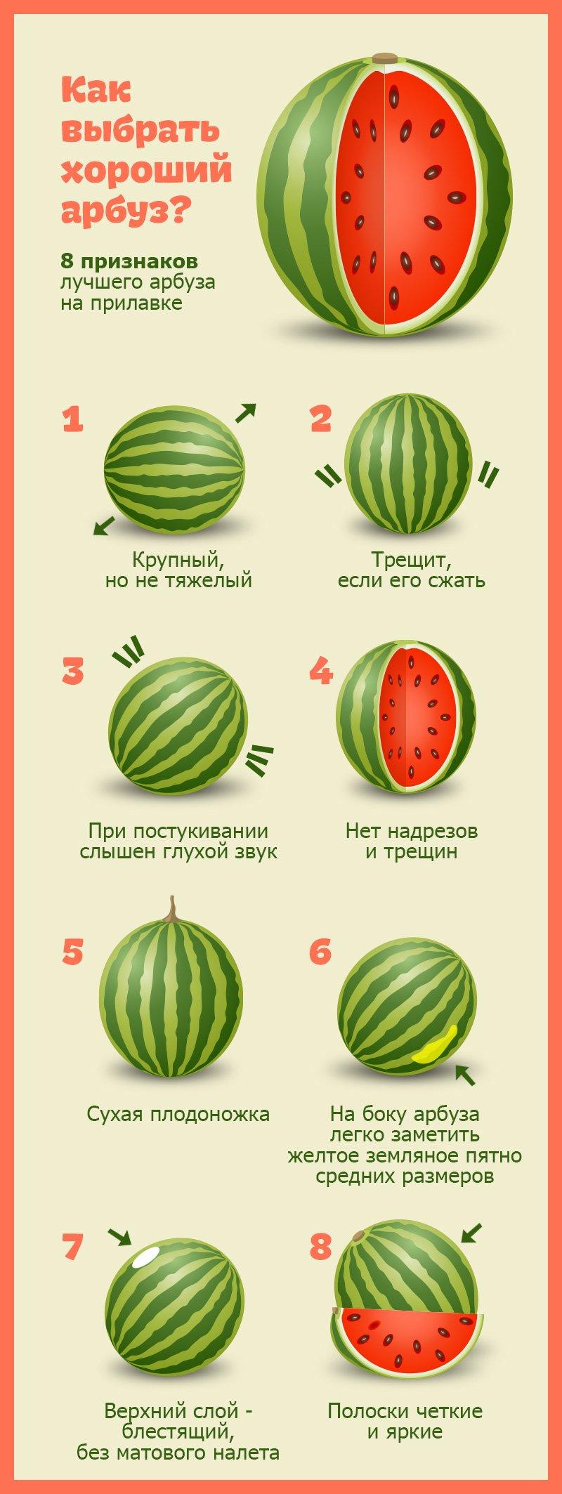 как выбрать вкусный арбуз