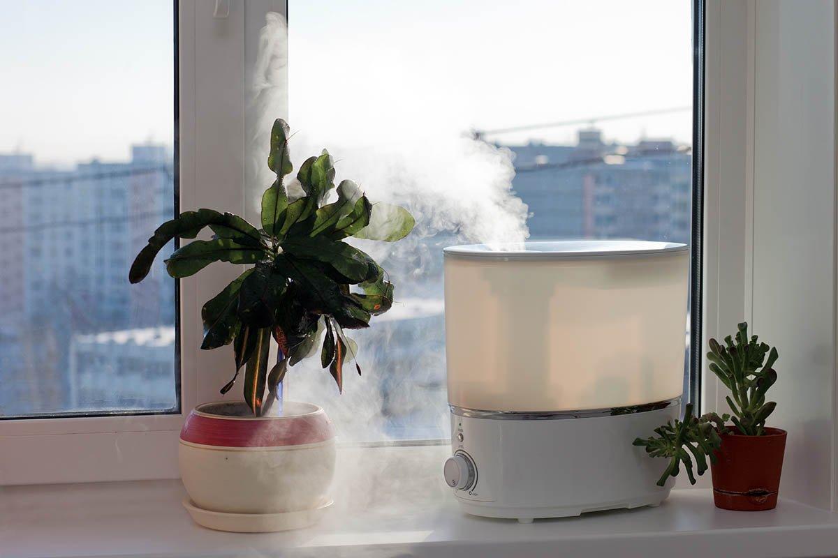 Куда нельзя ставить увлажнитель воздуха в доме