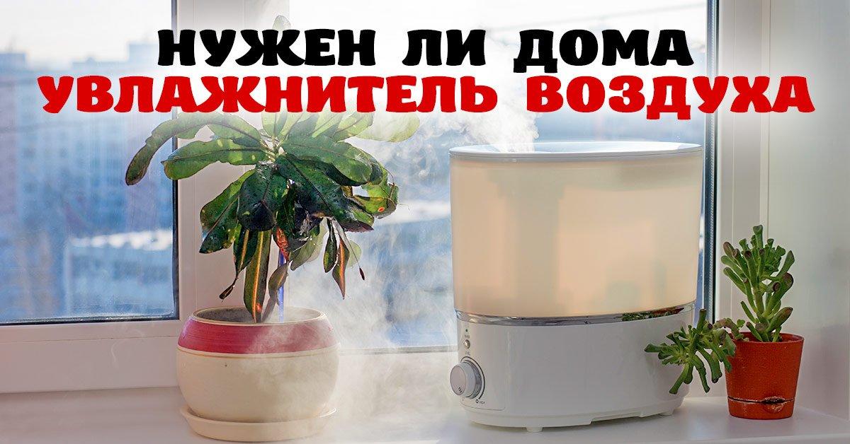 Как выбрать хороший увлажнитель воздуха для дома