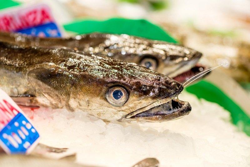 какую рыбу лучше не есть