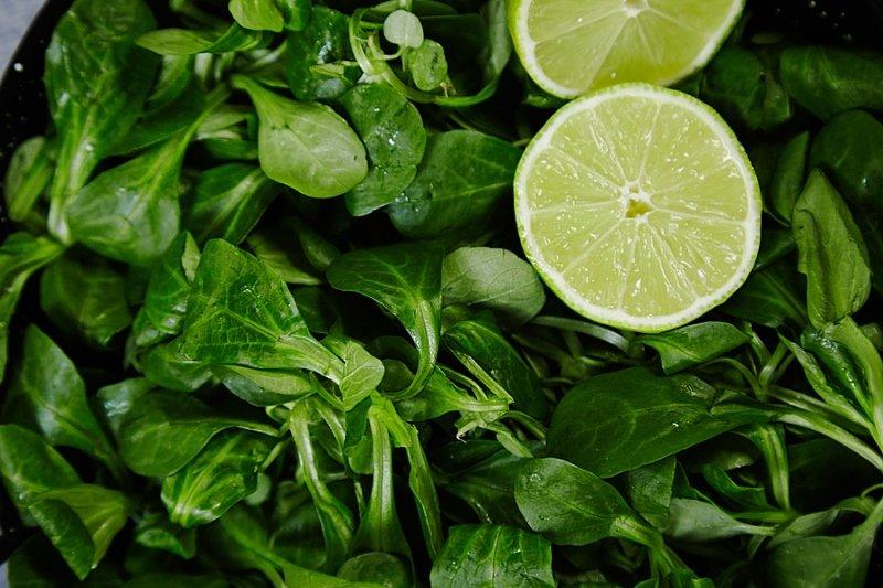 как выращивать зелень в квартире