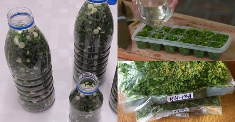 как заморозить зелень в формочках для льда