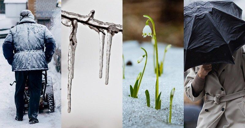 2019 год: что он нам несет? Холод в конце апреля — это полбеды, Эль-Ниньо и затяжные дожди летом куда печальнее.