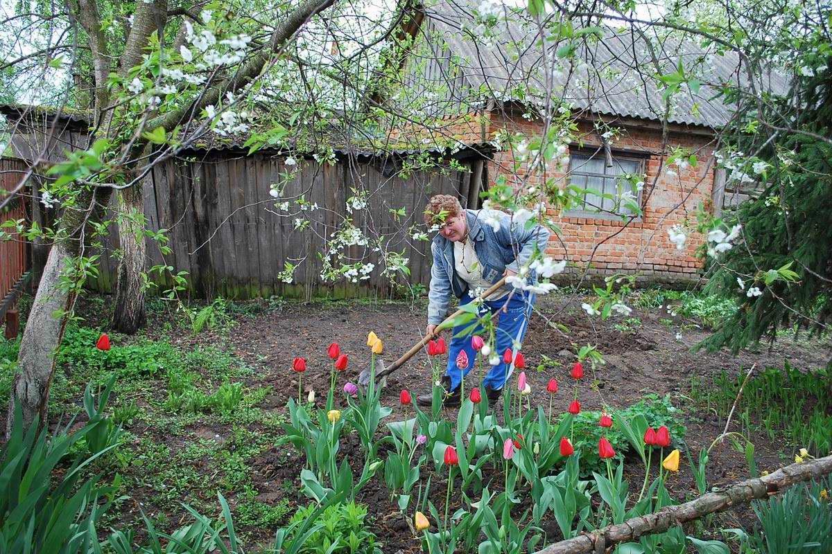 В юном месяце апреле из цветника не вылезаю, хочу стать цветком на своей клумбе