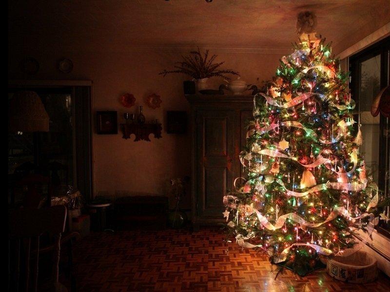 настоящая елка