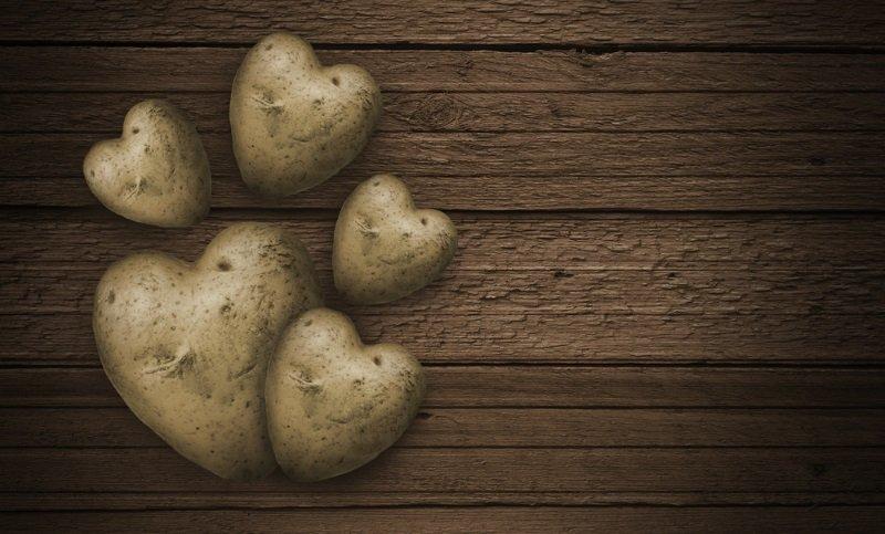 Как сделать закуску из картофеля в духовке Кулинария,Духовка,Закуски,Картофель,Мясо,Сыр,Ужин,Яйца