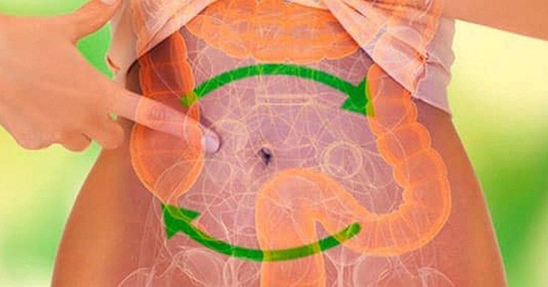 Лучшие способы очищения кишечника