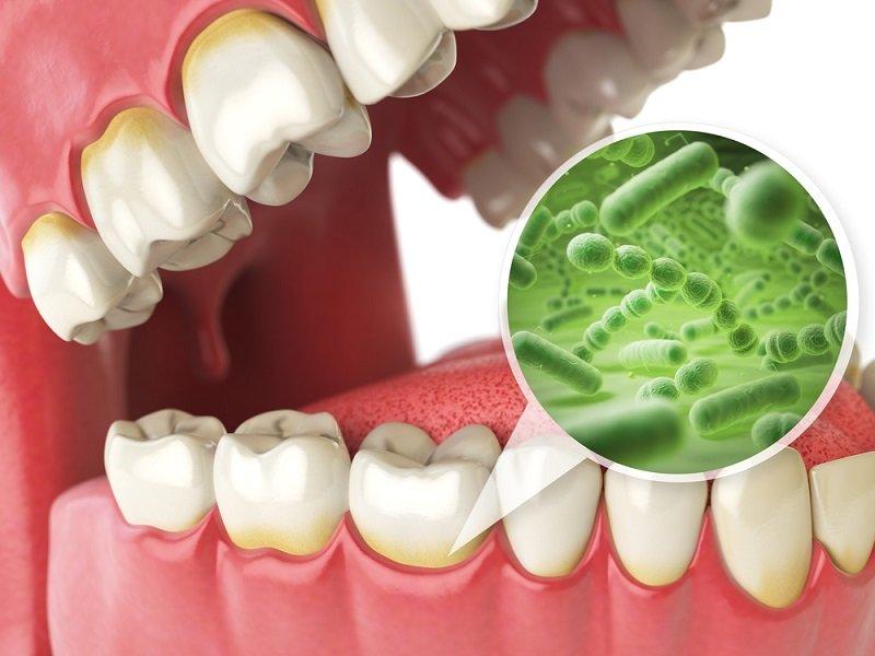 в какое время лучше чистить зубы