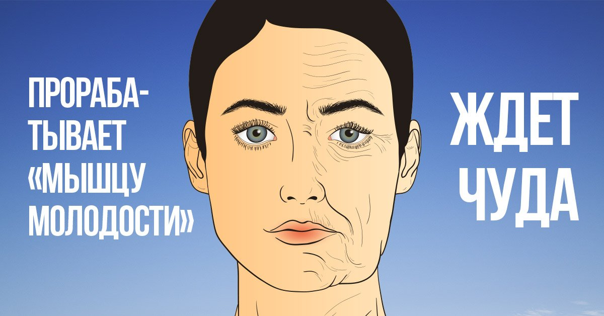 Комплекс упражнений для шеи: что такое платизма