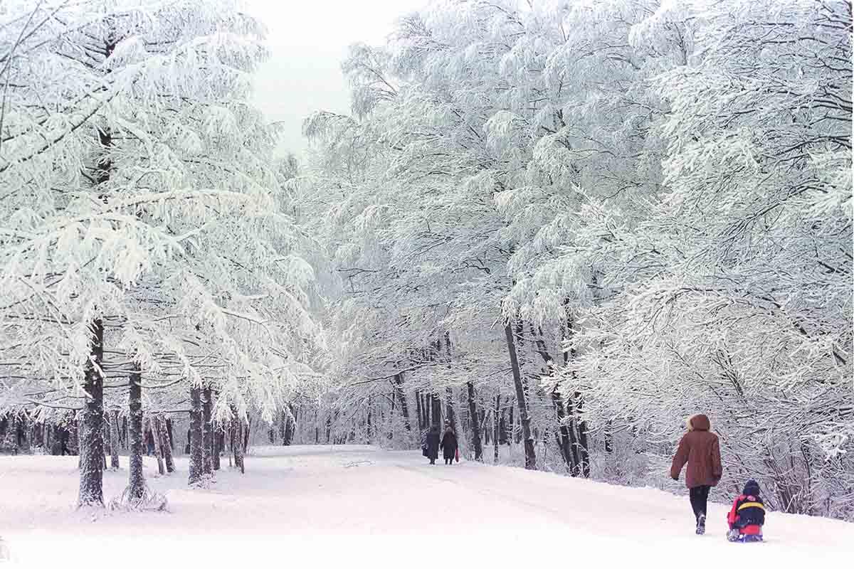 Горячие источники на Алтае и другие зимние красоты России, которые высоко оценили европейские туристы