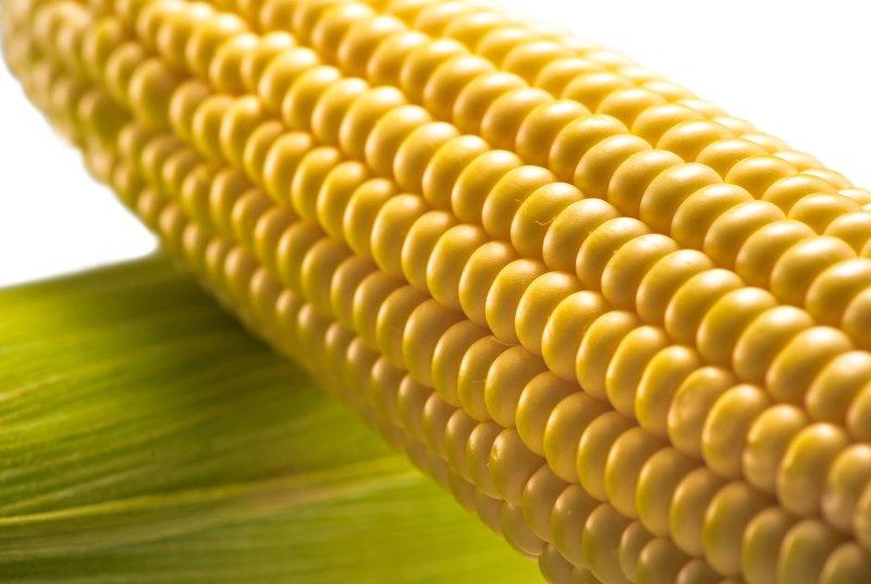 кукуруза на зиму без уксуса