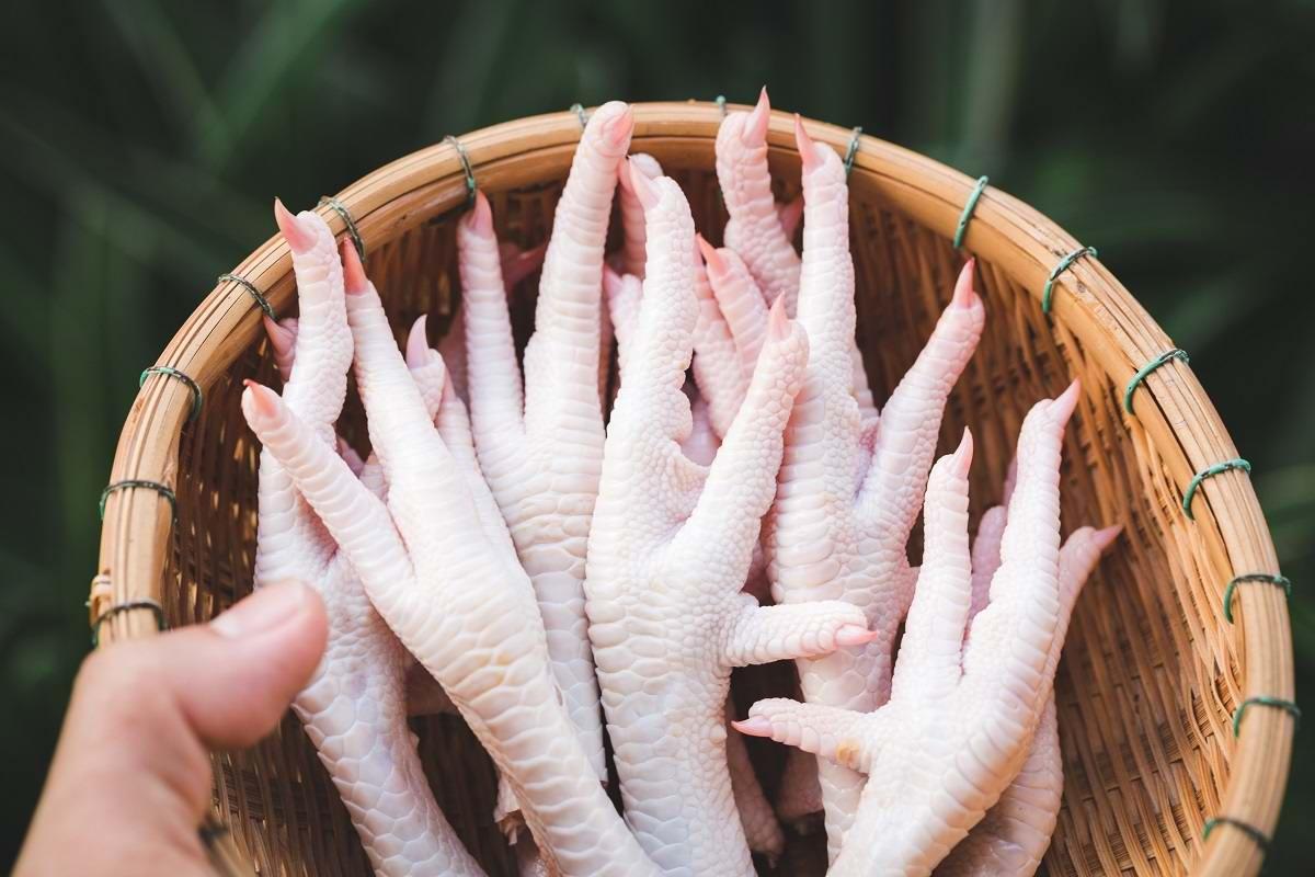 Польза куриных лапок для суставов народная обезбаливающая растирка для суставов рецепт