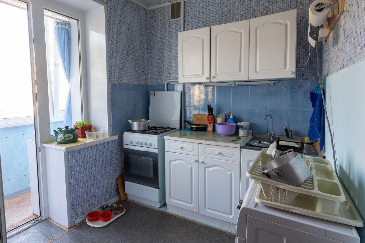Ревизия холодильника пенсионерки, у которой студенты снимают комнату