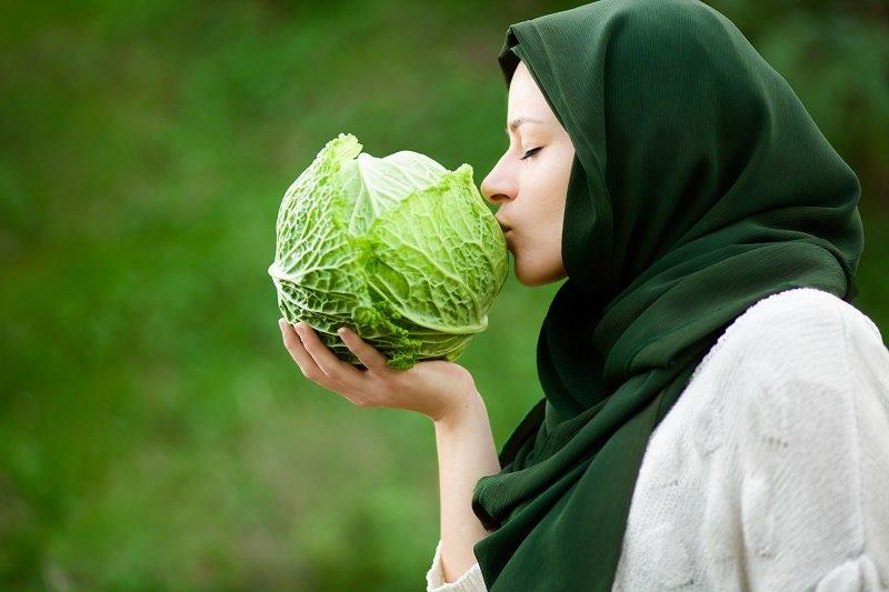 лечебные свойства капусты огородной