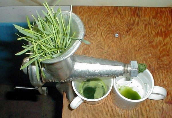 как приготовить сок из пырея