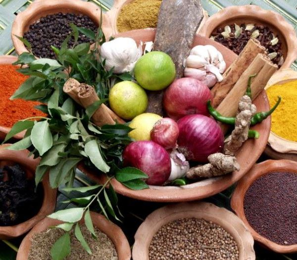 лекарственные растения против вирусов