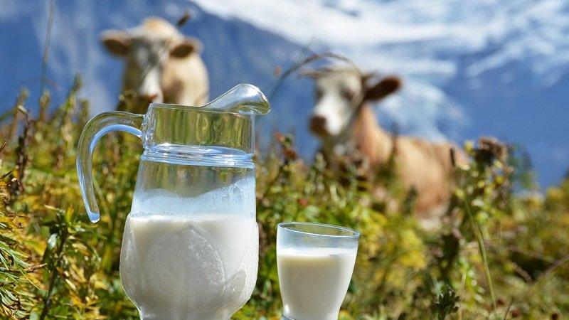 чесночное молоко от паразитов