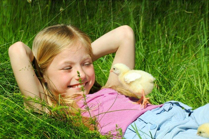 как провести лето детям