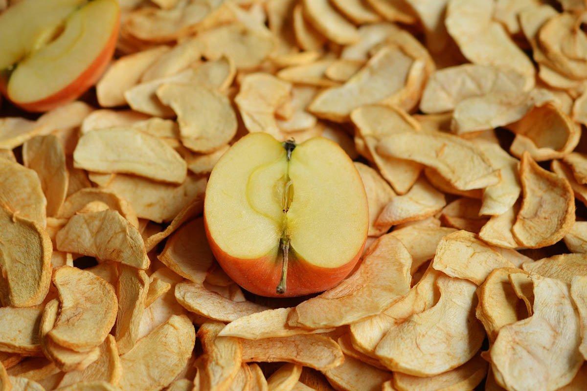 Сушилка для овощей и фруктов не остывает всё лето