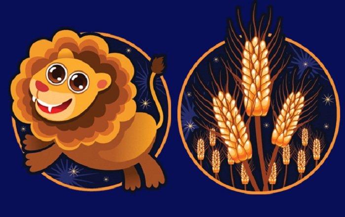 пограничные знаки лев дева