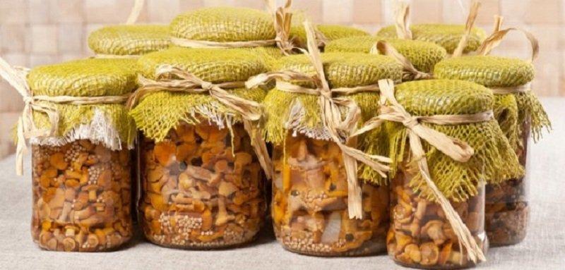 маринад для всех грибов