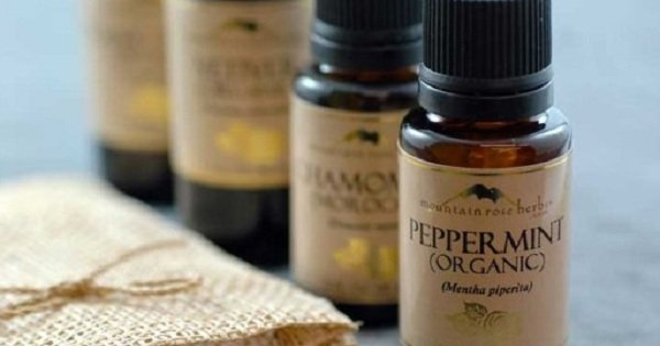 5 натуральных косметических масел от старения кожи. Теперь можно обойтись и без крема!