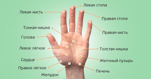 Акупунктура без иголок! Делай массаж этих точек для снижения аппетита и укрепления иммунитета.